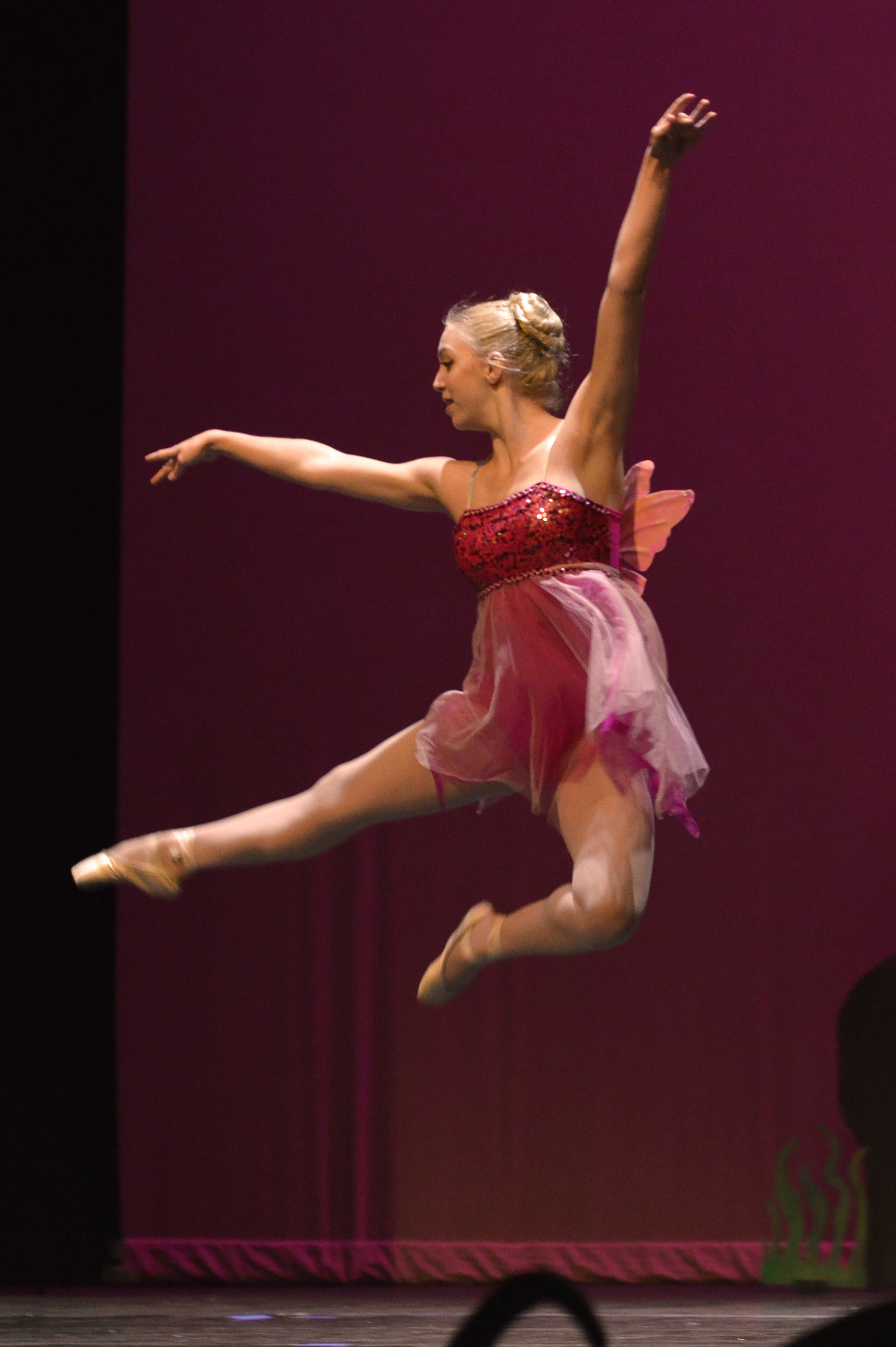 Students receive Pre-professional ballet and dance training at The Dance Element